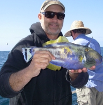 reef fishing charters